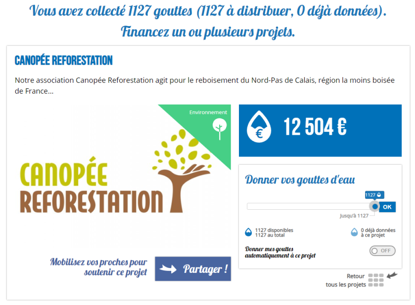 lilo_canopee_reforestation